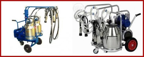 5 Video to Become an Expert in Bucket Milking Machines